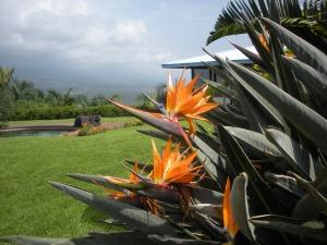 Hawaii 2011 081